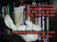 A Big Day For Princess